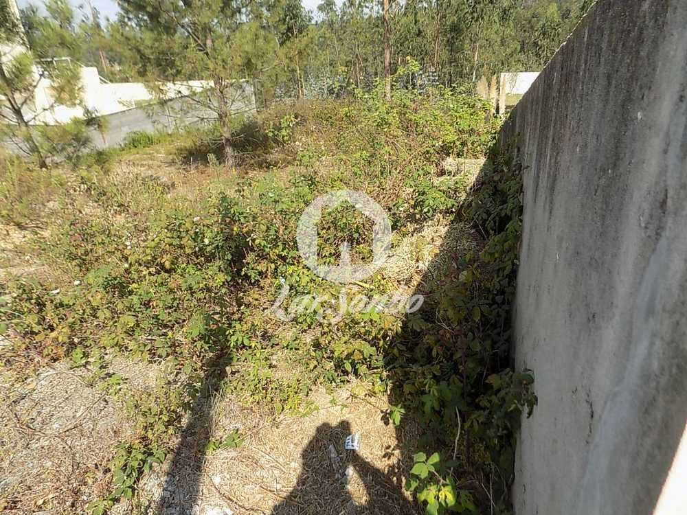 Balazar Póvoa De Varzim terrain picture 102747