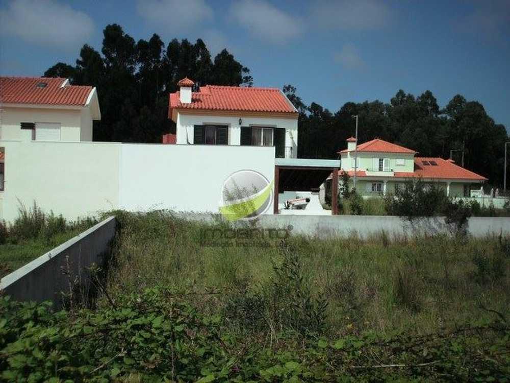 Cortegaça Ovar terrain picture 106727