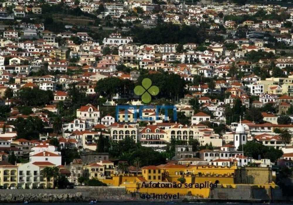 Funchal Funchal terrain picture 106293