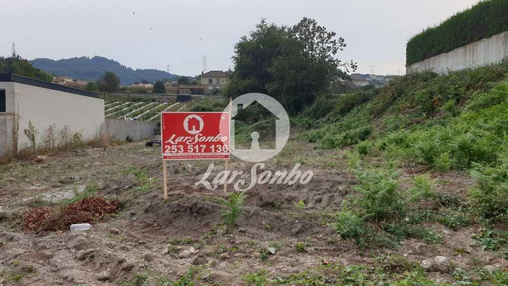 Guimarães Guimarães terrain picture 102849