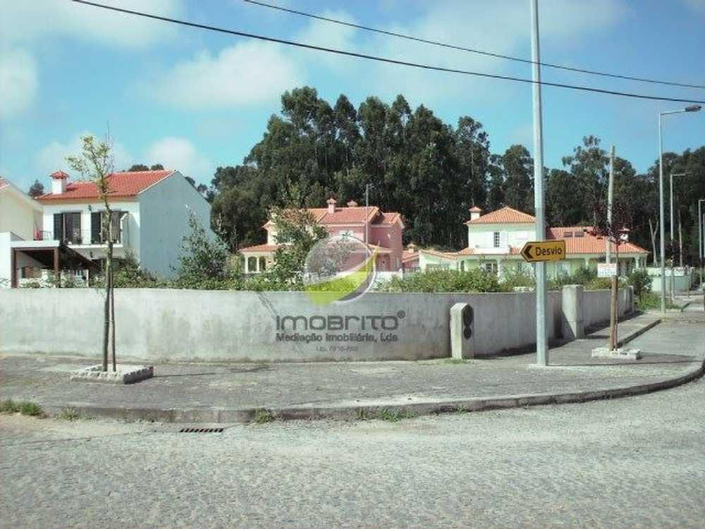 Aldeia dos Fernandes Almodôvar terrain picture 106726