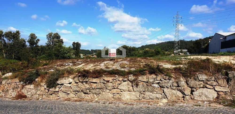 Cavalões Vila Nova De Famalicão terrain picture 104537