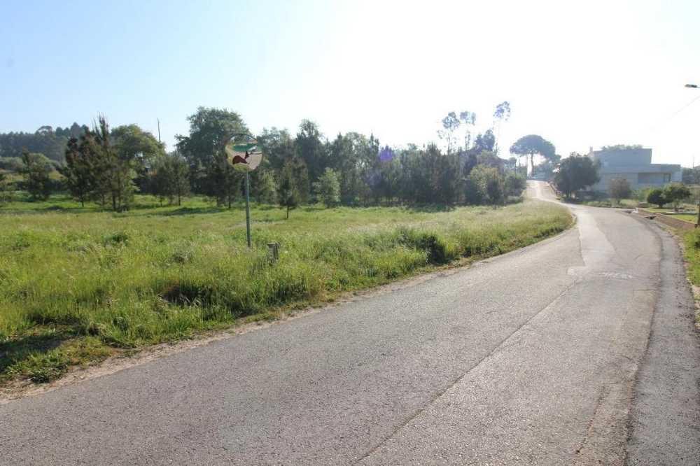 Maceira Leiria 土地 照片 #request.properties.id#