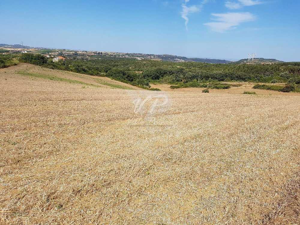 Arruda dos Vinhos Arruda Dos Vinhos Grundstück Bild 103519
