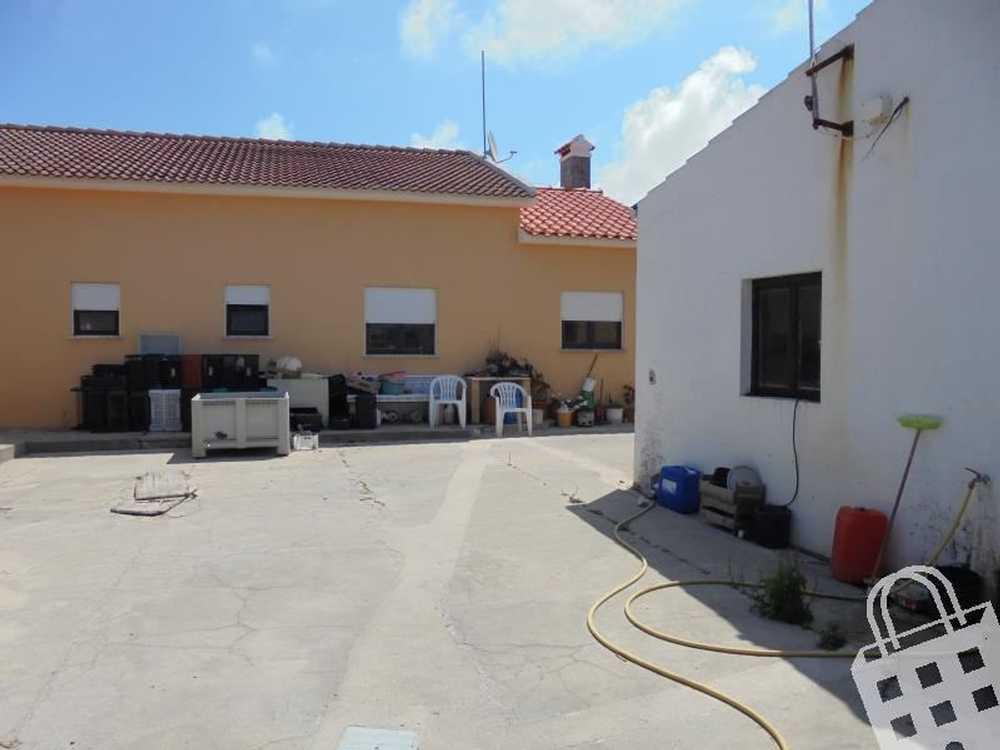 Amoreira Óbidos house picture 104628