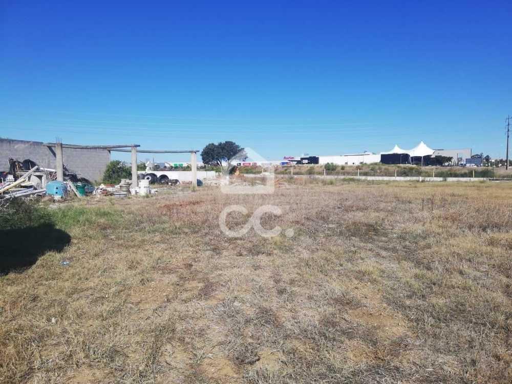 Figueiras Vouzela terreno foto #request.properties.id#