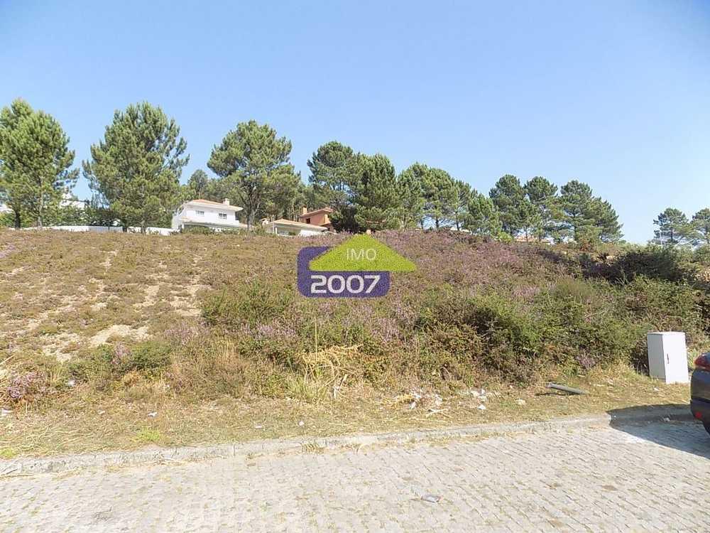 Fafião Santa Maria Da Feira terrain picture 101927