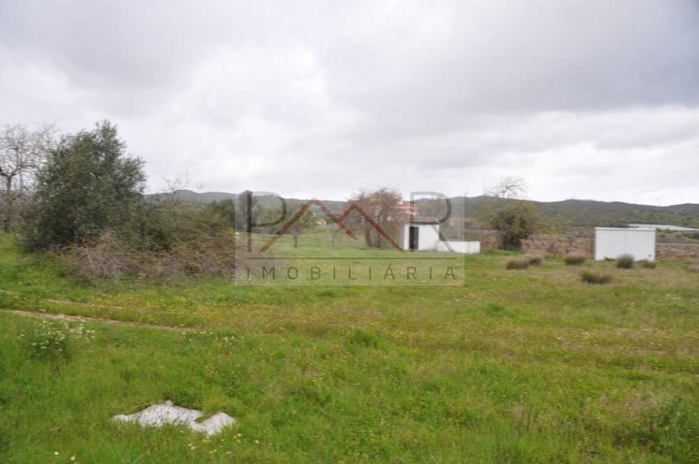 Albernoa Beja terreno foto #request.properties.id#