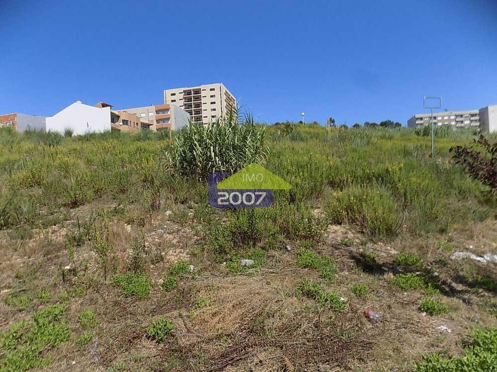 Vila Maior Santa Maria Da Feira terrain picture 101888