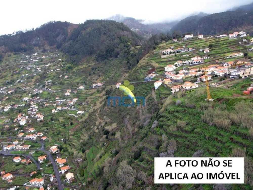 Arco da Calheta Calheta (Madeira) terrain picture 106294