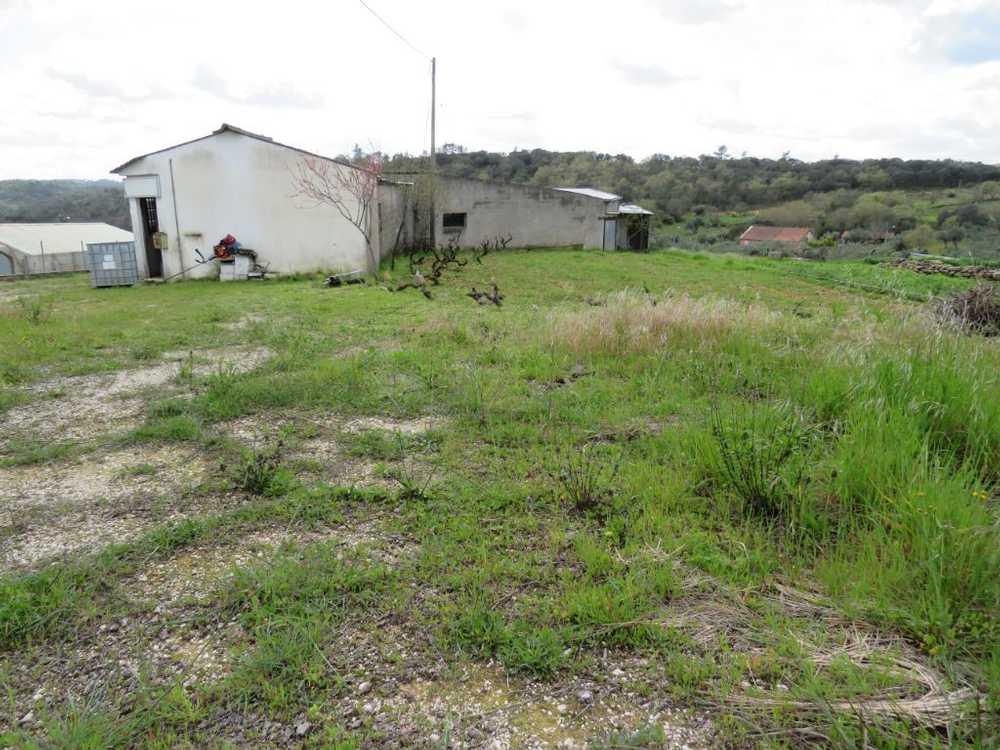Além da Ribeira Tomar casa foto #request.properties.id#