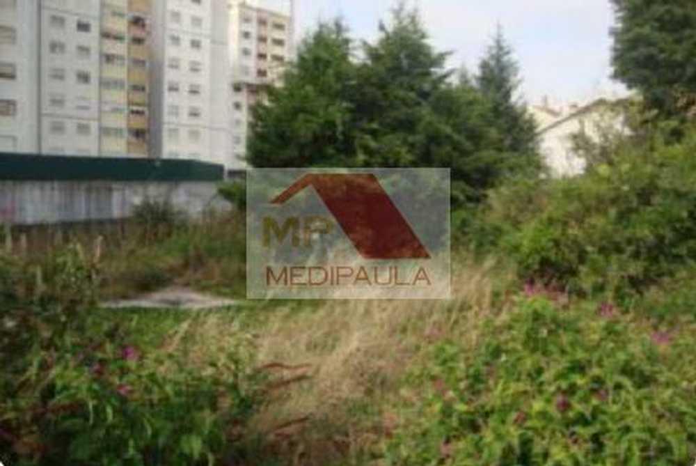Agualva-Cacém Sintra terrain picture 105566