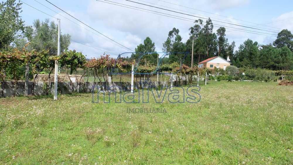 Sá Vila Verde terrain picture 103095