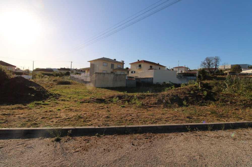 Oliveira de Frades Oliveira De Frades Grundstück Bild 102133