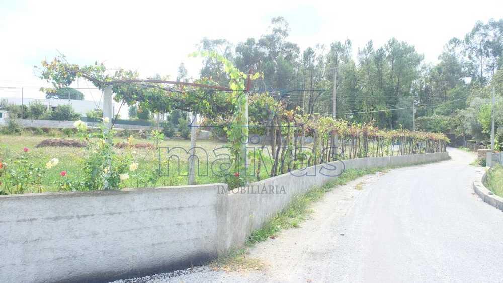 Sá Vila Verde terrain picture 103094