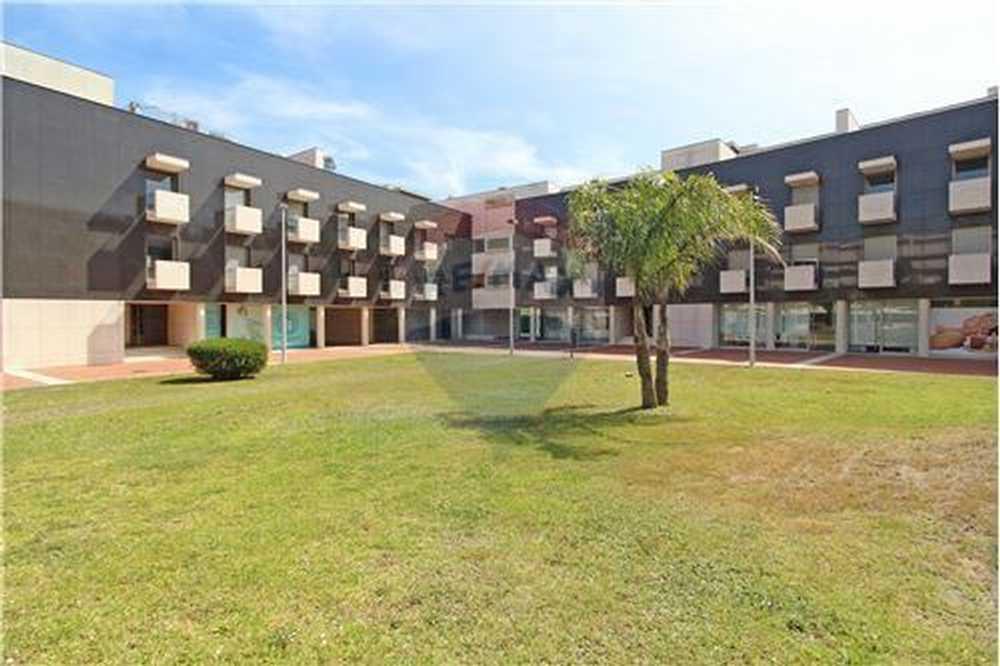 Barroselas Viana Do Castelo apartment picture 103358