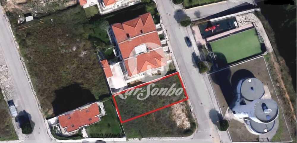 Ribeira Coimbra terrain picture 102844