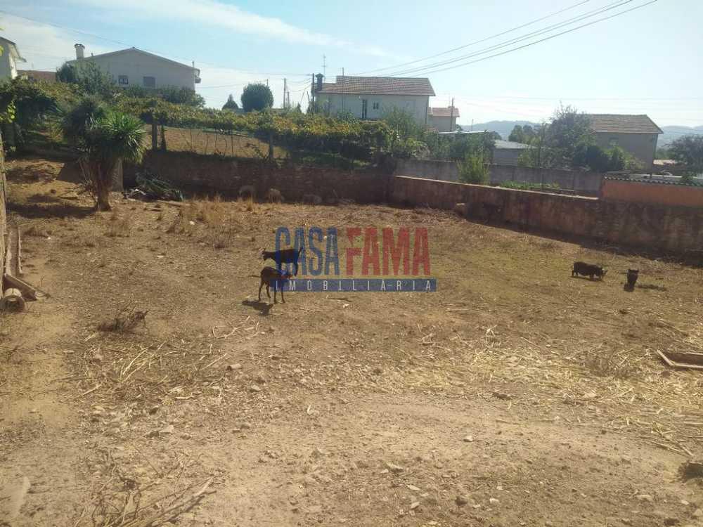 Ribeirão Vila Nova De Famalicão terreno foto #request.properties.id#