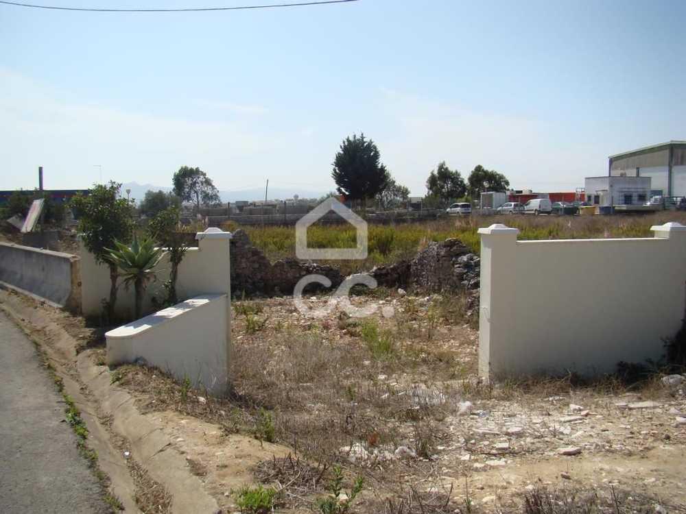Almargem do Bispo Sintra terrain picture 104470