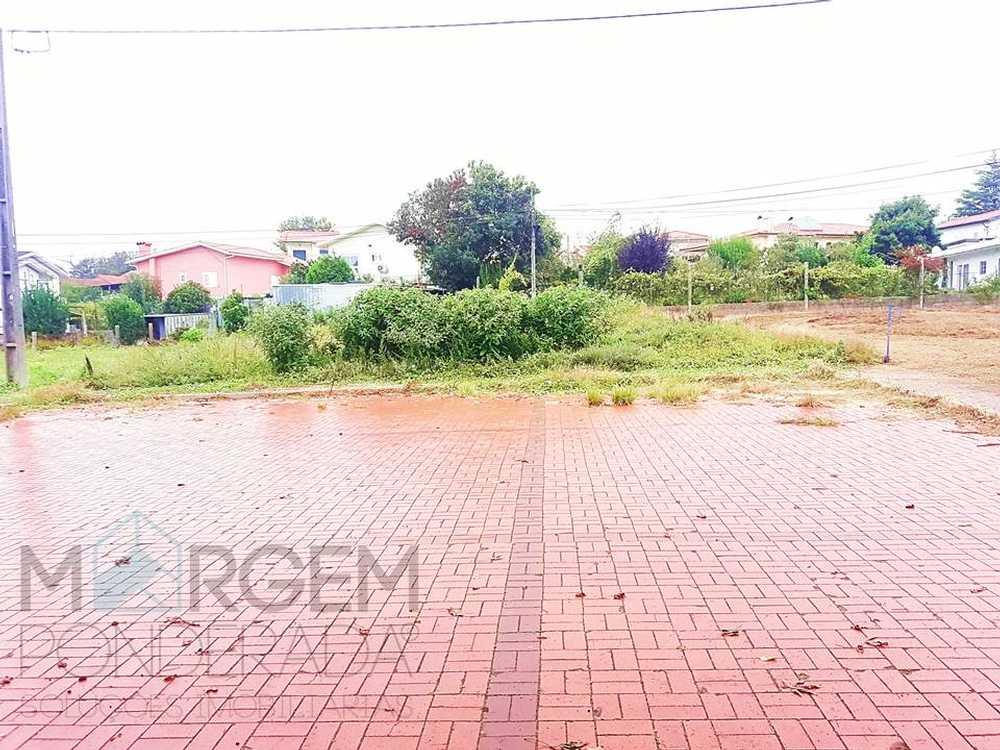 Mó Ansião 土地 照片 #request.properties.id#