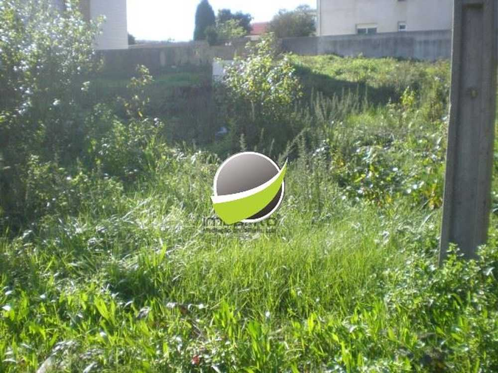 Fiães Santa Maria Da Feira terreno foto #request.properties.id#