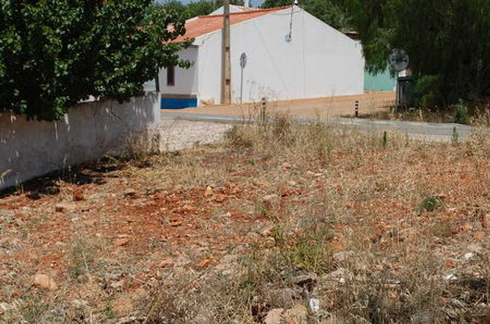Mexilhoeira da Carregação Lagoa (Algarve) terrain picture 108074