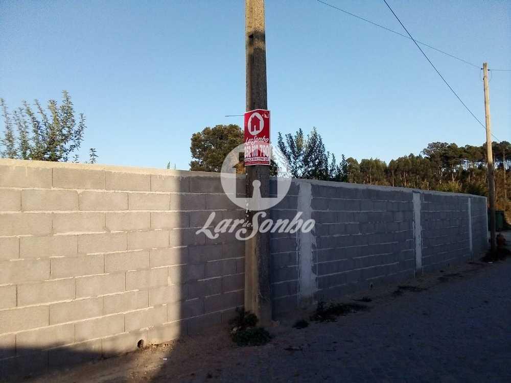 Junqueira Vila Do Conde terrain picture 109926
