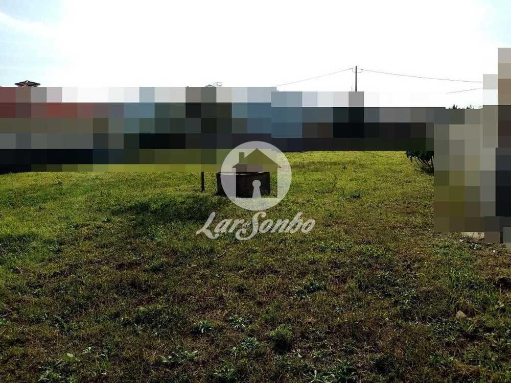 Gião Vila Do Conde terrain picture 109966