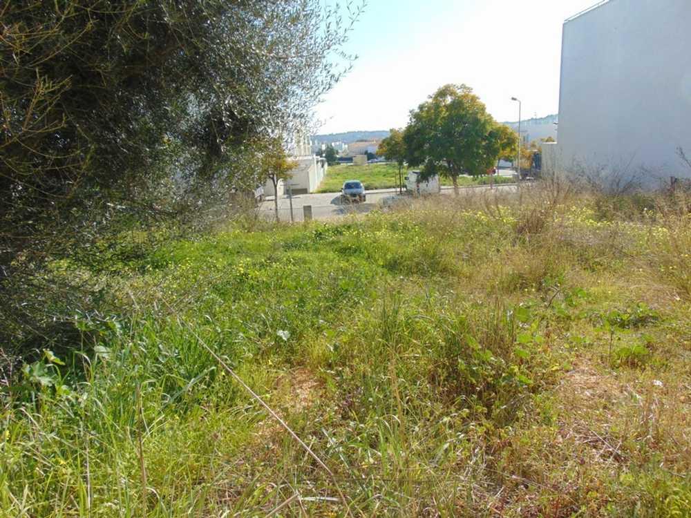 Parchal Lagoa (Algarve) terrain picture 107756