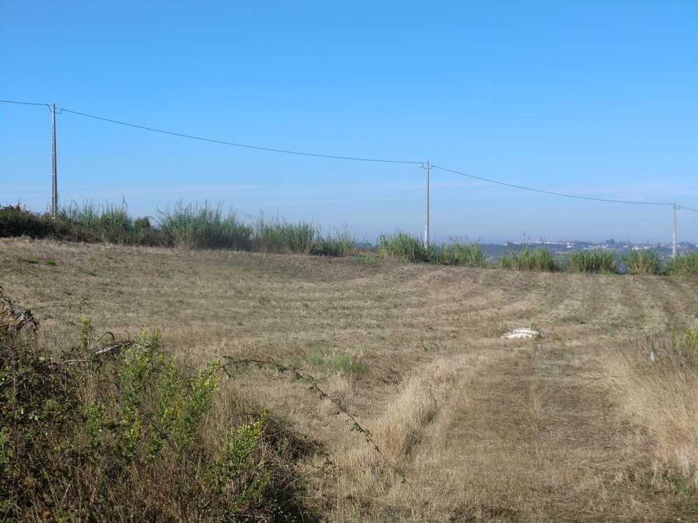 A dos Francos Caldas Da Rainha Grundstück Bild 107639