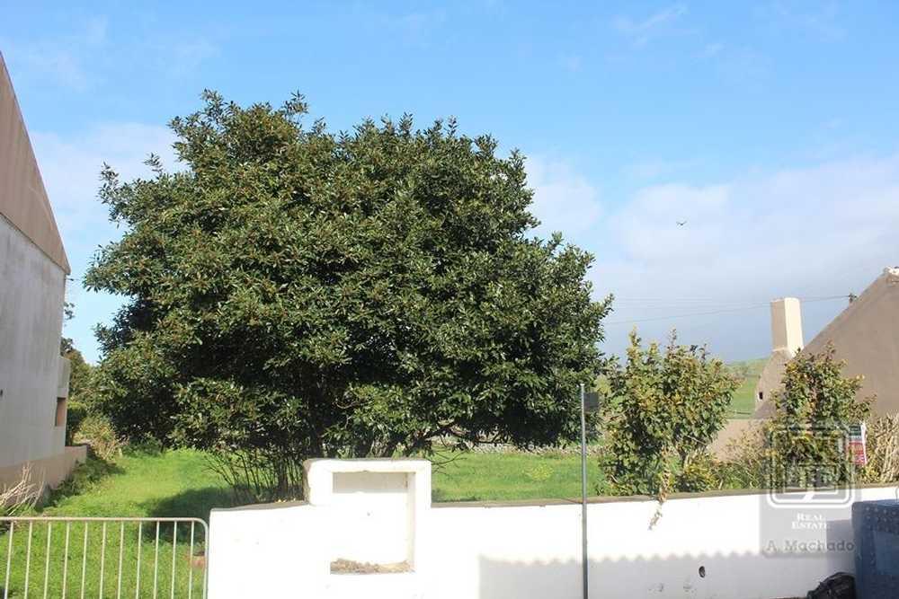 Sé Monção terrain picture 109225