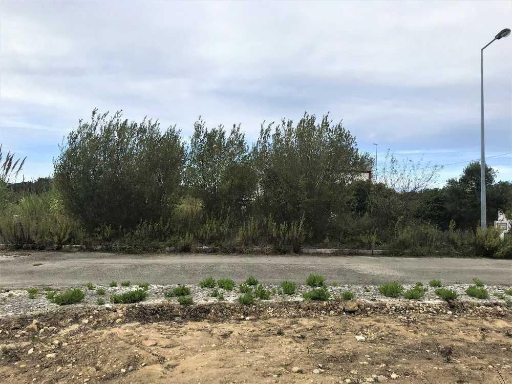 Tornada Caldas Da Rainha terrain picture 108719