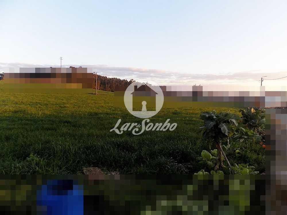 Parada Anadia terrain picture 110062