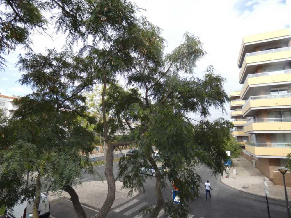 Bemposta Lagoa (Algarve) apartment picture 107284