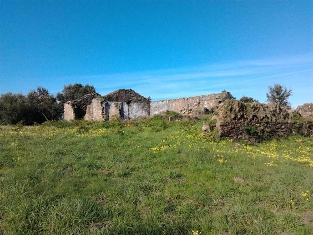 Óbidos Óbidos terrain picture 108570