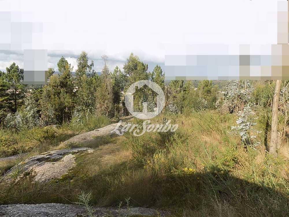 Sezures Vila Nova De Famalicão terrain picture 109958