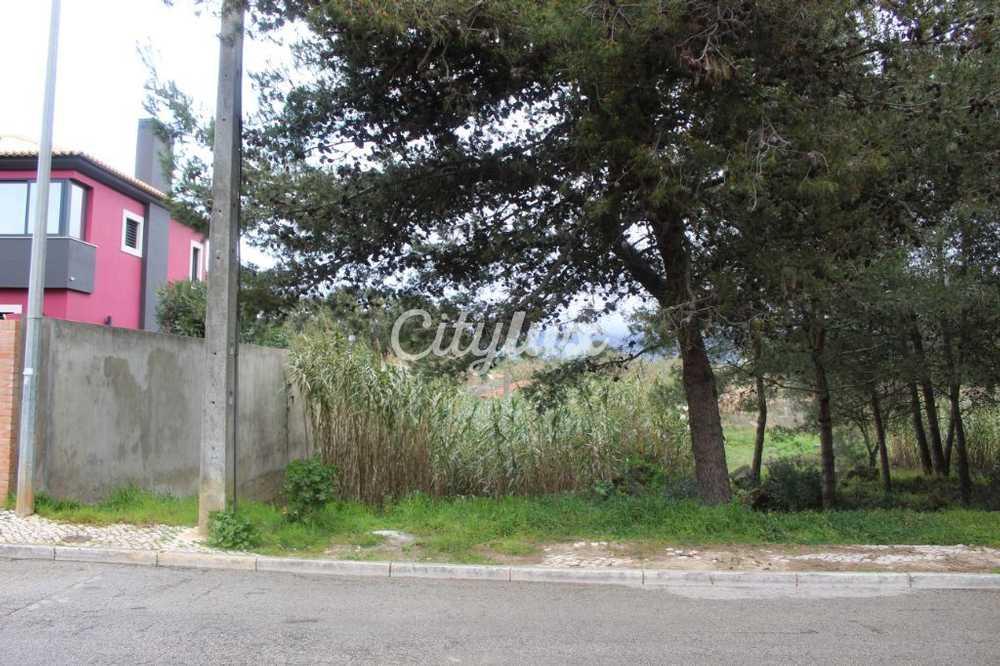 Cascais Cascais terreno foto #request.properties.id#