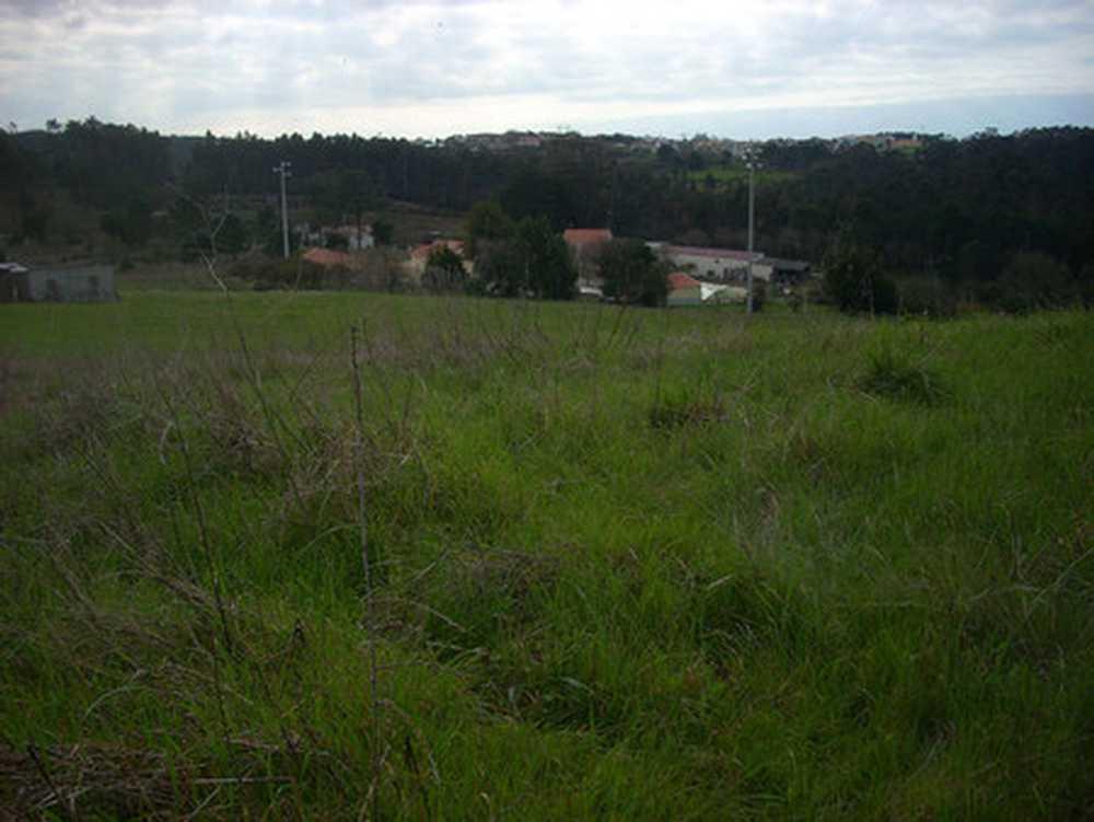 Salir de Matos Caldas Da Rainha Grundstück Bild 108033