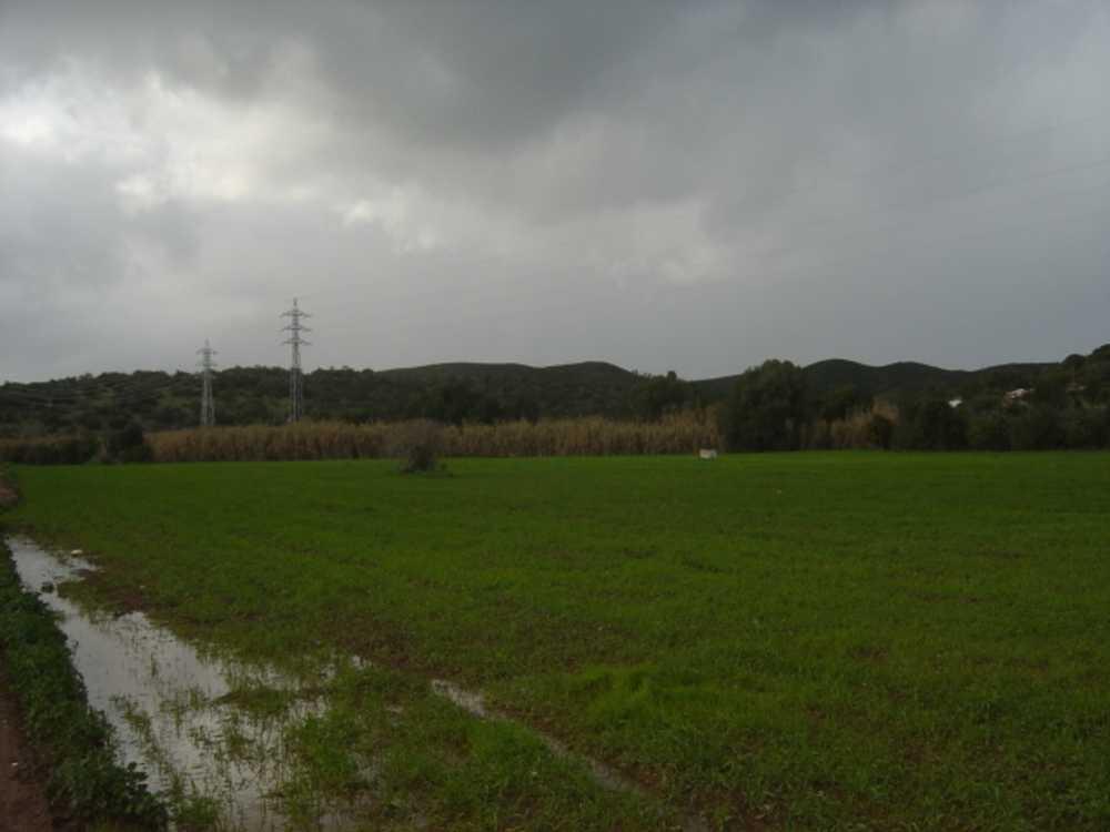 Mexilhoeira Grande Portimão terreno foto #request.properties.id#