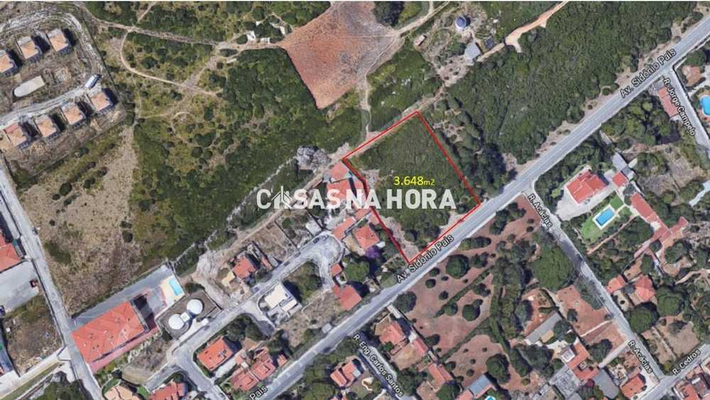 Mem Martins Sintra terrain picture 108999