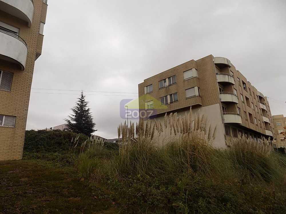 Arrifana Condeixa-A-Nova terrain picture 108965