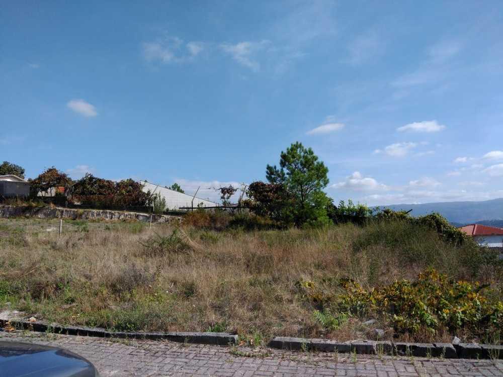 Fregim Amarante terrain picture 109540