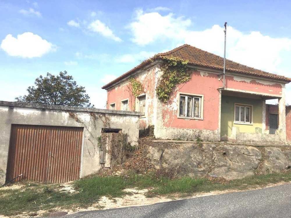 Salir de Matos Caldas Da Rainha house picture 108827