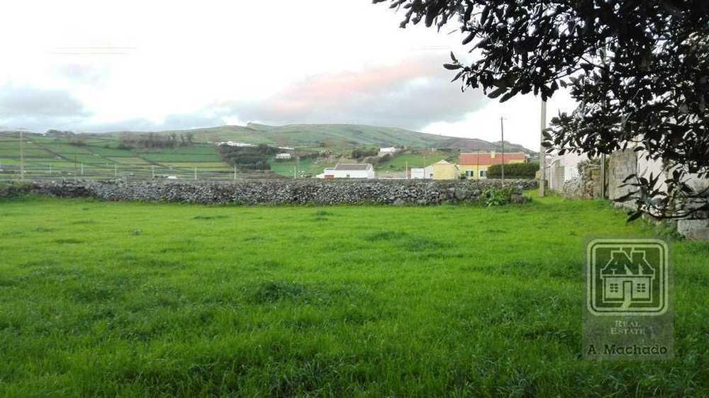 Sé Monção terrain picture 109227
