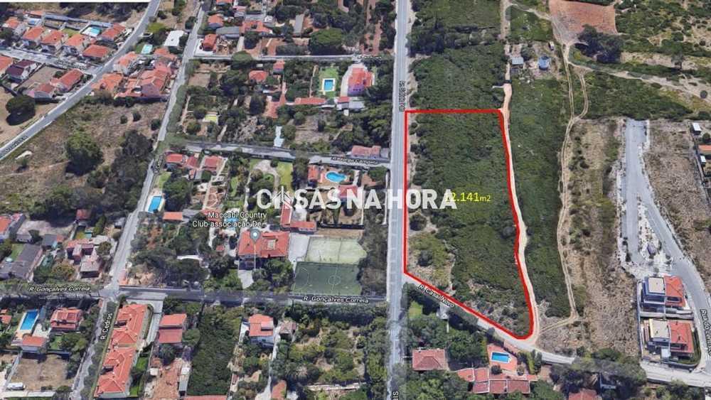Pero Pinheiro Sintra terrain picture 109000