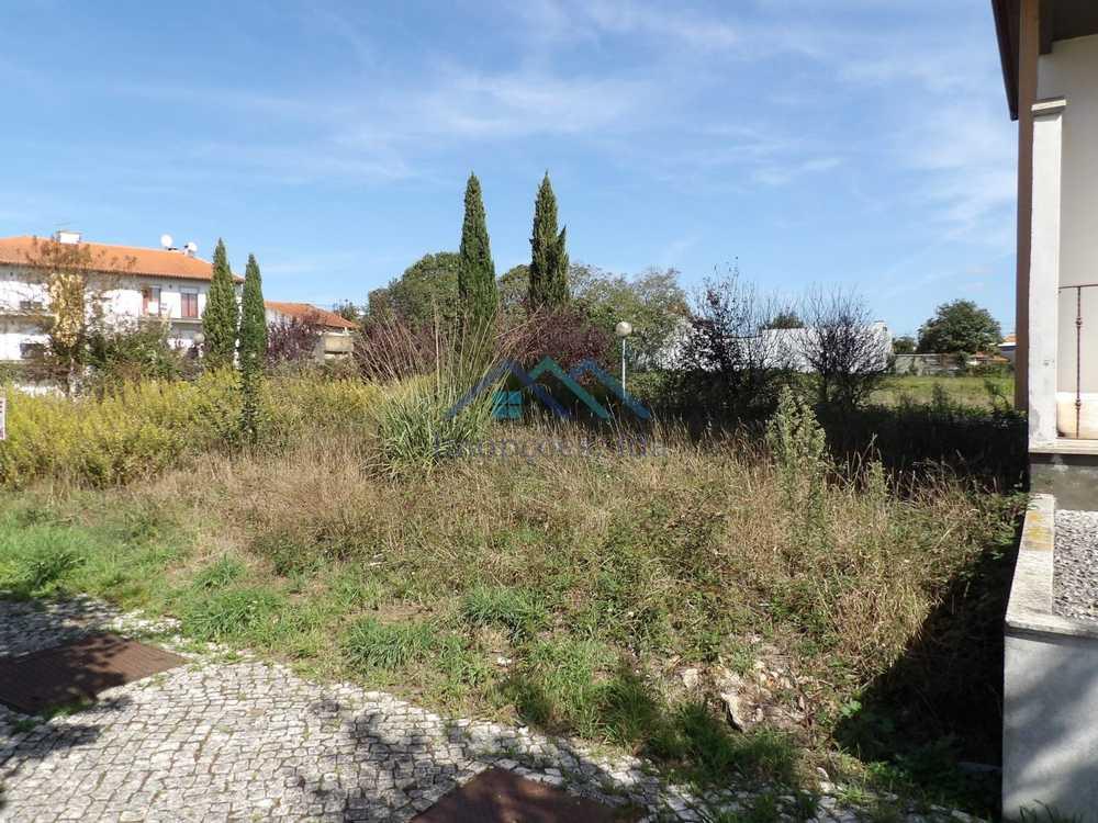 Albergaria-A-Velha Albergaria-A-Velha terreno foto #request.properties.id#