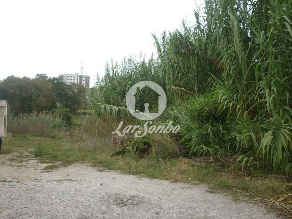 Pantanhas Paredes De Coura terreno imagem 110083