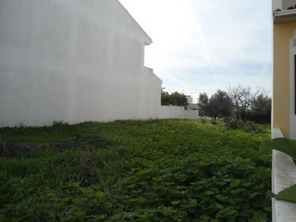 Bemposta Lagoa (Algarve) terrain picture 108085