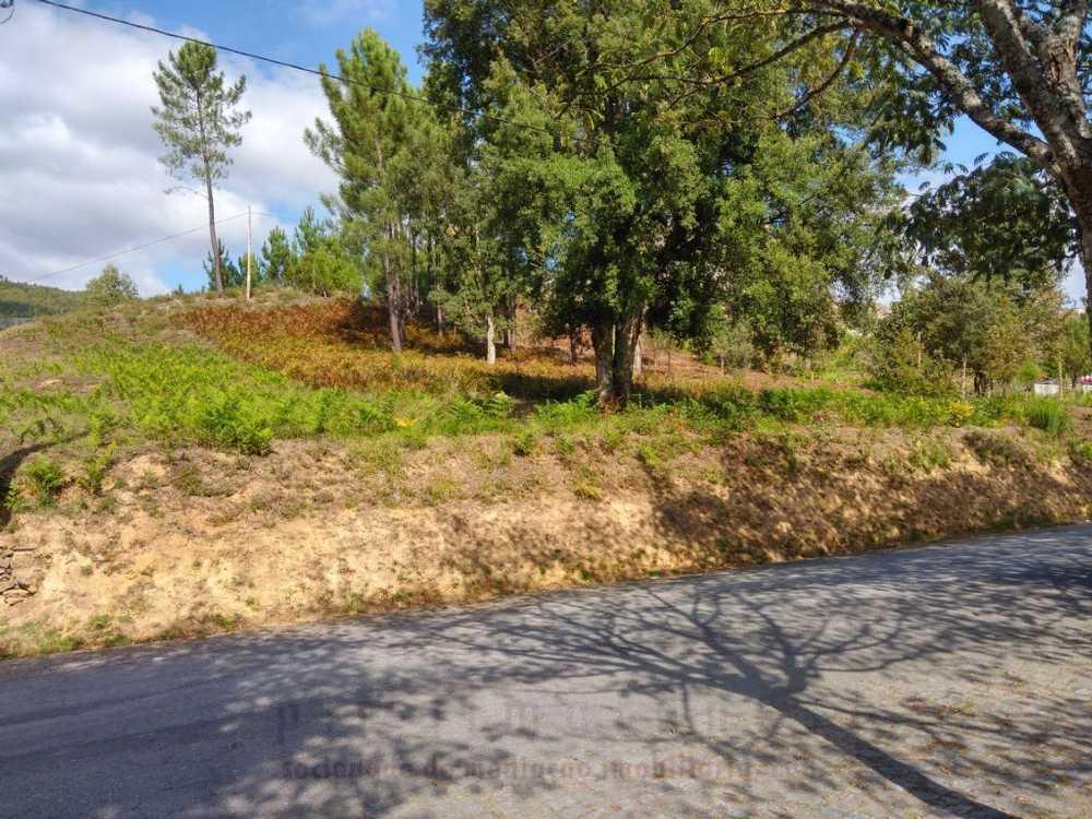 Aboim Amarante terrain picture 109541