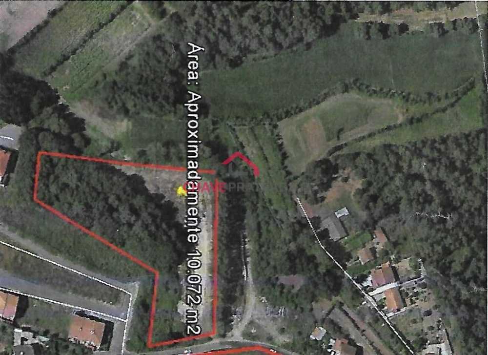 Vila de Prado Vila Verde terrain picture 109551